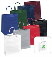 Gloss Laminated Paper Bag images